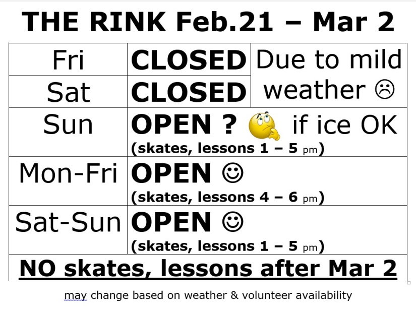 IceRink(Final Week)